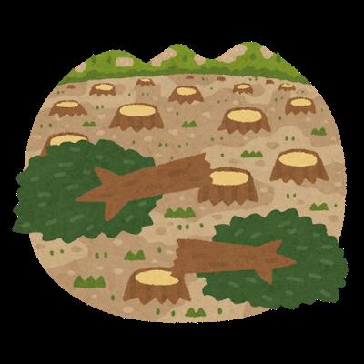 2017年8月1日 森林伐採大賛成!植物や森林を復活させるプロジェクトをやっている奴等はバカ!