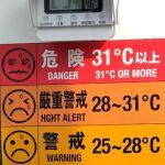 天より下にありし者 交通誘導員 39日目 気温三五度熱中症厳重注意